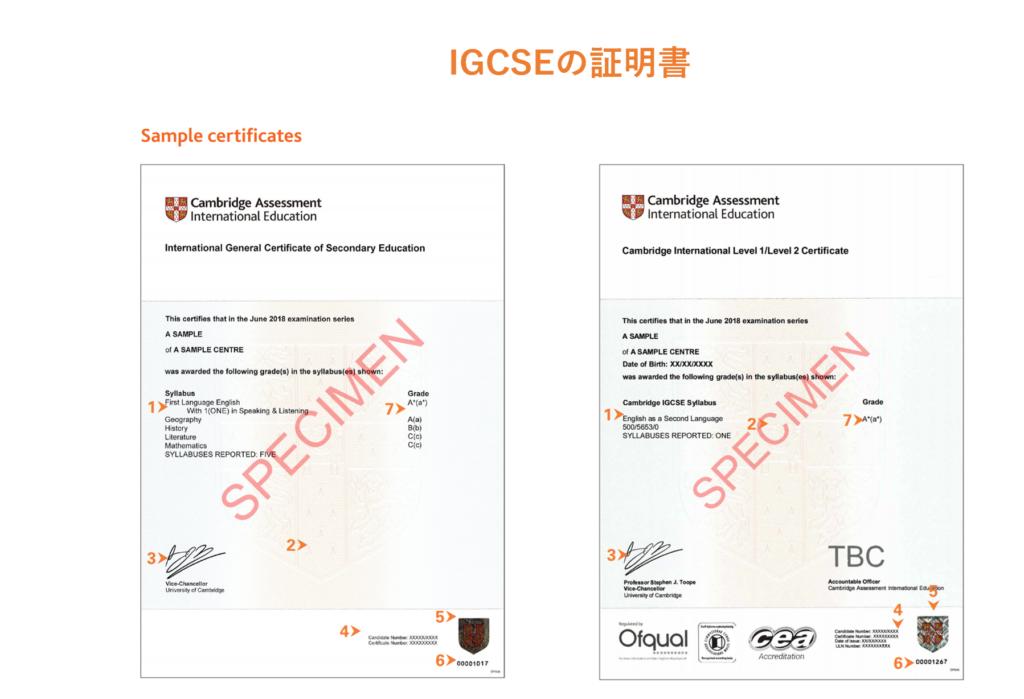 IGCSE証明書